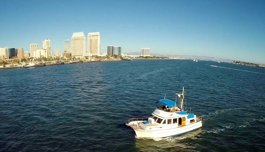 Enjoy 40' Sport Fisherman Fishing Charters In San Diego
