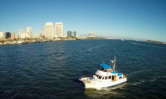 Enjoy 40' Sport Fisherman Fishing Charters In San Diego
