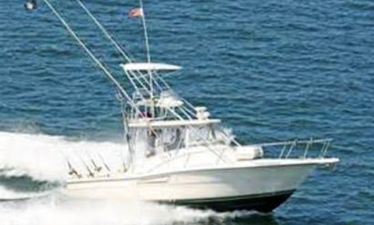 32ft Sport Fisherman Boat Charter In Montauk, New York