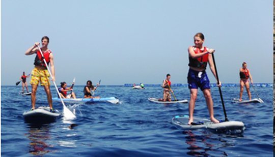 Paddle Boat Rental In Tenerife