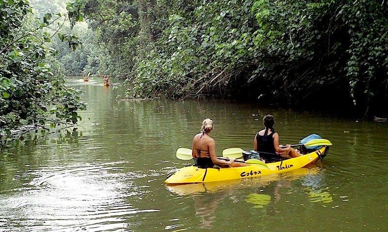 Kayak Wailua Tours in Kauai
