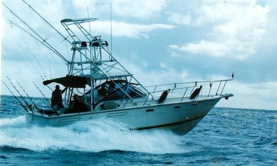 St Maarten Deep Sea Fishing Charters