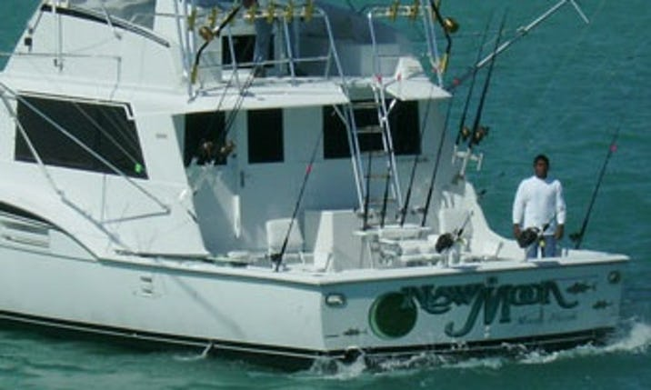 Miami Fishing Charter On 53 Hatteras Sport Fishing Boat Getmyboat