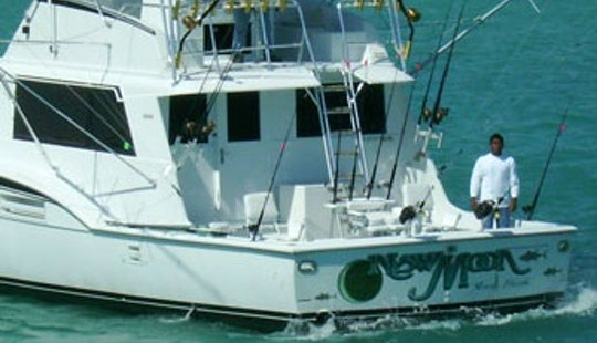 Miami Fishing Charter On 53' Hatteras Sport Fishing Boat