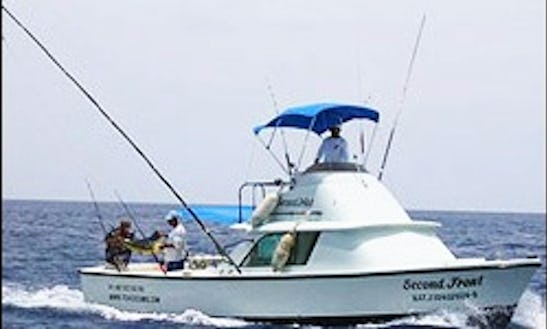 31' Bertram Sport Fishing Charter In Cozumel, Mexico