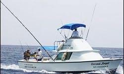 31' Bertram Sport Fishing Charter in Cozumel, Mexico