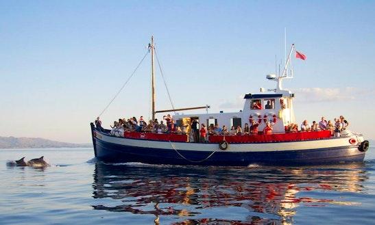 Passenger Boat Rental In Mallaig