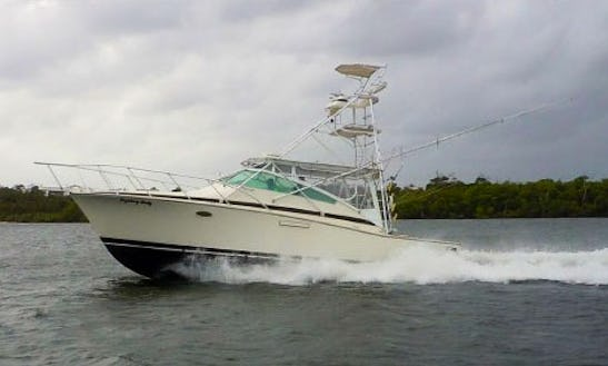 38ft The