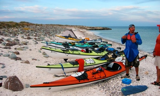 Guided Kayak Tour On The Coastline Of Cape Breton Island