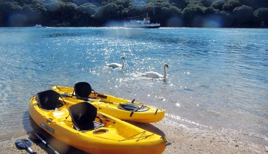 Kayak - Sup Hire In Helford Passage