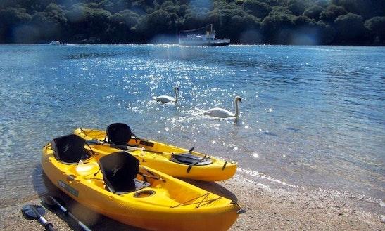 Kayak - Sup Hire In Helford Passage