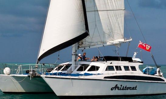 Sailing Catamaran Aristocat In Hamilton