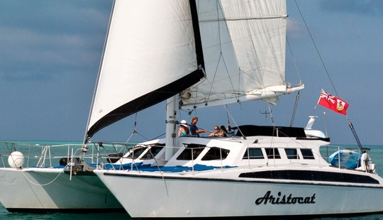 Sailing Catamaran Aristocat In Hamilton