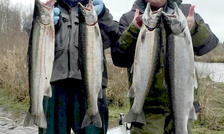 Guided Fishing Adventures in Toledo