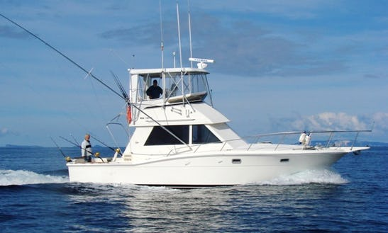 Charter On 50ft Sportfisherman Boat In Destin, Florida