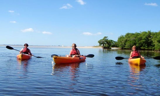Kayak And Paddleboard Rental In Fort Myers