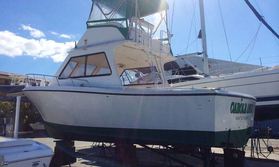 "Fishing Charter on 36ft ""Carole Ann II"" Boat in Marco Island, Florida"