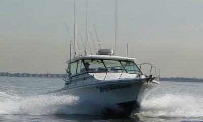 Fishing Charter In Leonardo