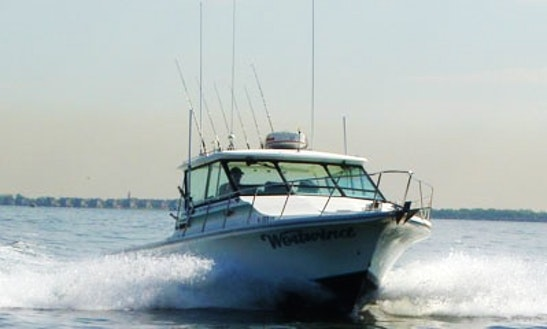 Fishing Charter In Leonardo