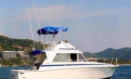 Sportfishing Charter 'el Rene' In Zihuatanejo