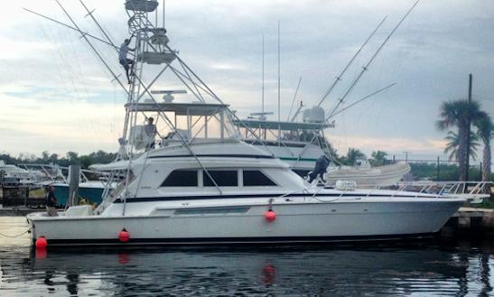Sport Fishing Charter In Grand Isle, Louisiana