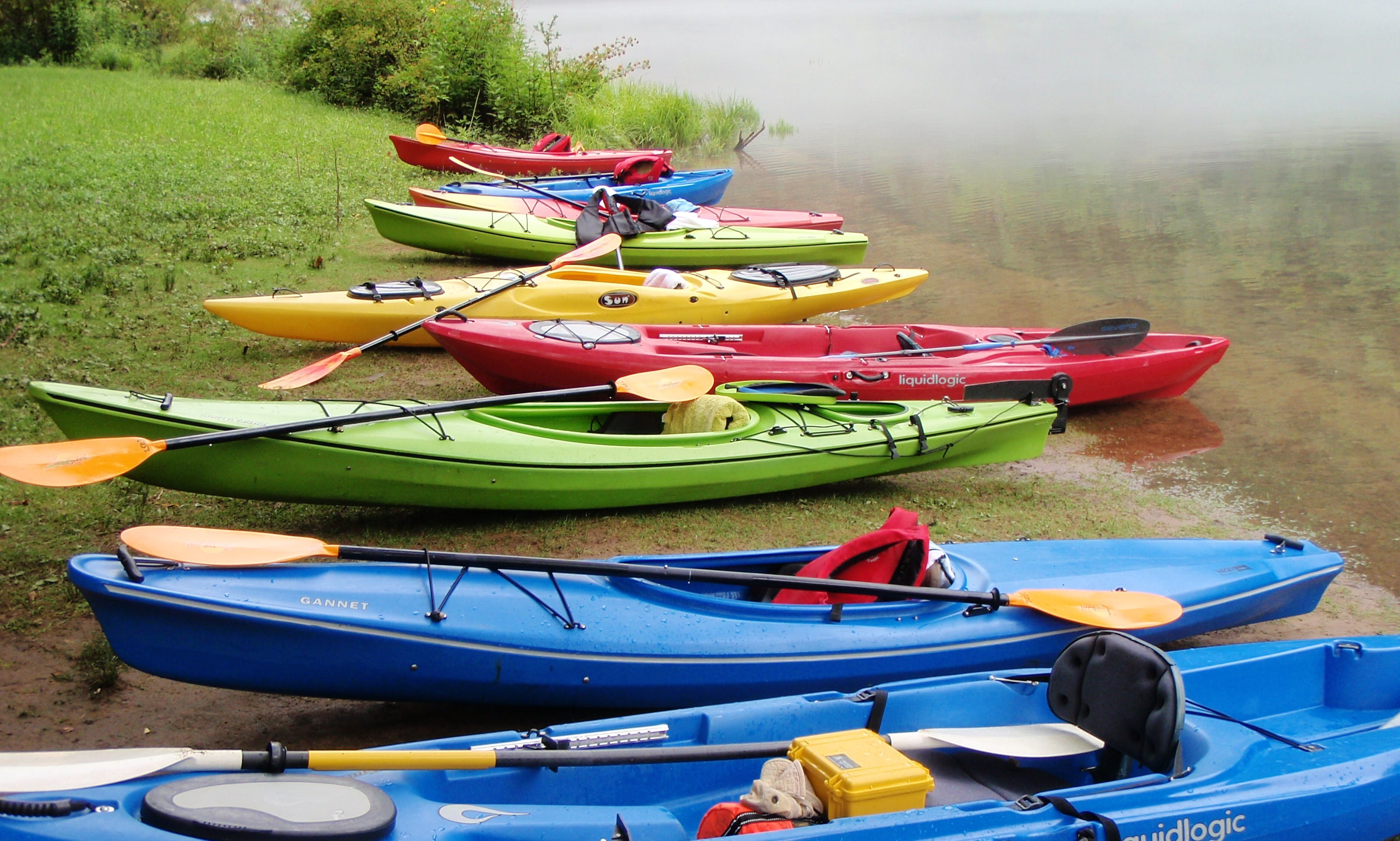 Guided Lake Kayaking Trip in Elizabethton, Tennessee
