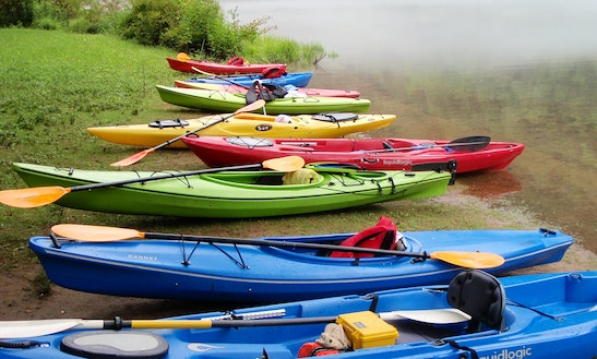 Kayak Rental In Elizabethton