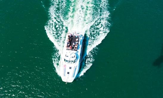 Nova Cruises In Newcastle