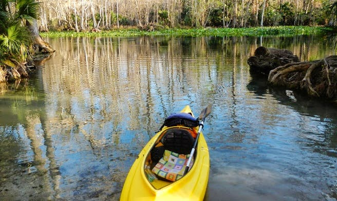 Rent a kayak for a day In Sarasota, Florida