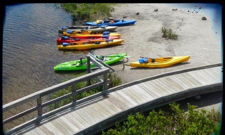 Three-Hour Rental of Tandem Kayak In Sarasota, Florida