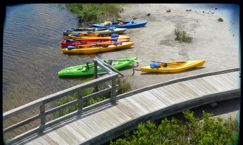Three-Hour Rental of Tandem Kayak In Sarasota, Florida