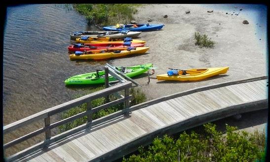 Tandem Kayak Rental In Sarasota
