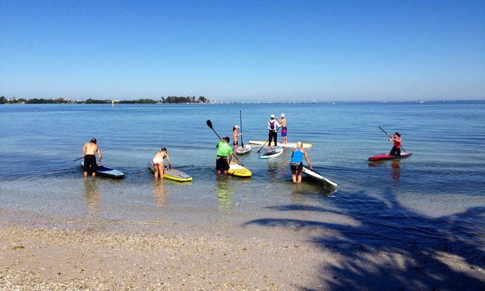Stand Up Paddleboard Eco Tour In Sarasota