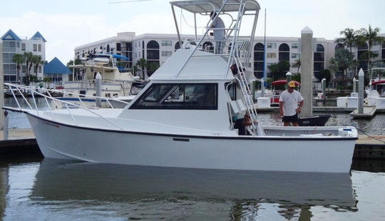 Morgan Sport Fisherman 31' Rental In Bradenton Beach