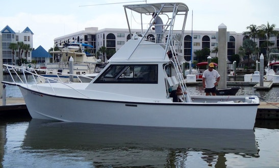 Morgan Sport Fisherman 31' Rental In Bradenton Beach