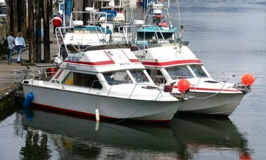 26' Sport Fishing Charter In Prince Rupert
