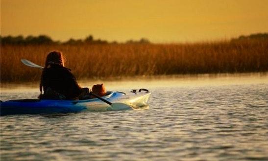 Kayaking Tours In Savannah