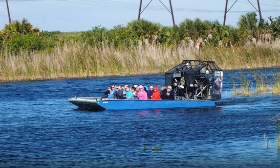 Airboat Tour In Weston
