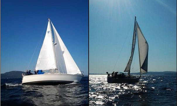 "34ft ""Sagacious"" Pearson Sloop Boat Sailing Charter in Camden, Maine"
