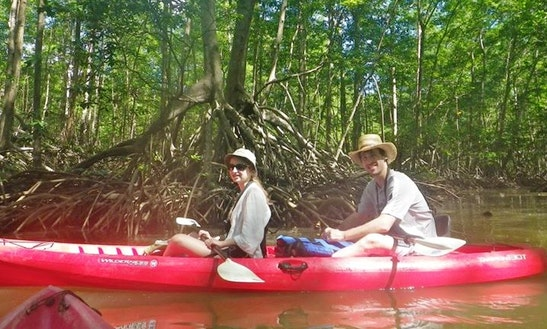 Tandem Kayak Rental & Guided Tour In Costa Rica
