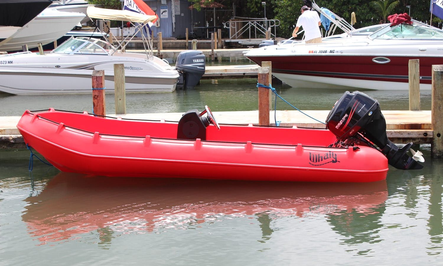 13' Whaly Boat Rental In L'Ampolla