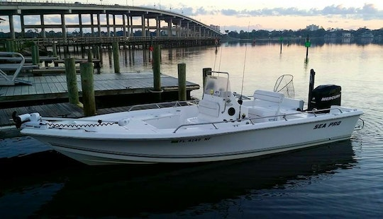 Fishing Charters In Ormond Beach
