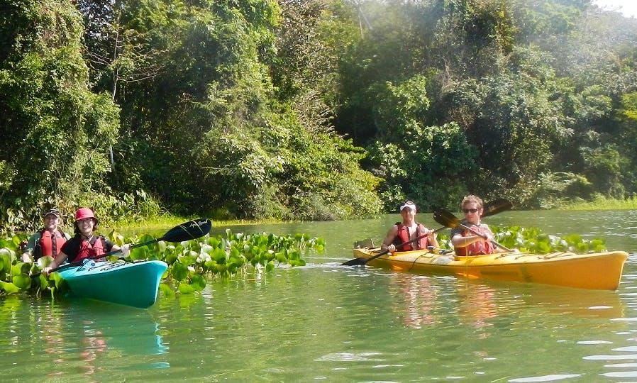 Canal Kayaking in Panama