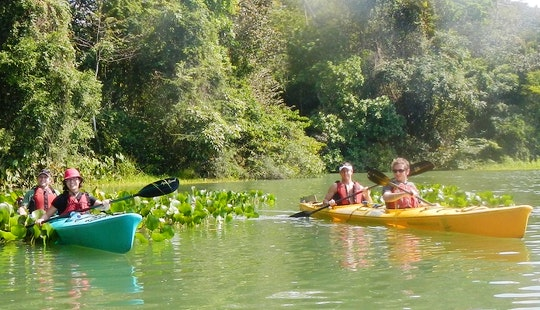 Canal Kayaking In Panama