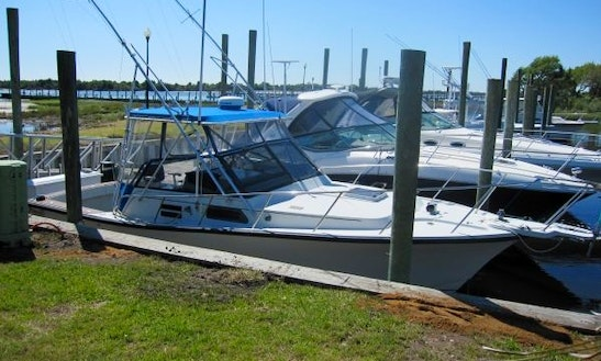 32ft Rampage Sport Fisherman Yacht Charter In Wildwood, New Jersey