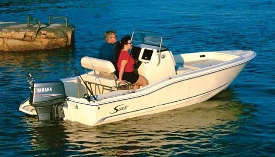 Rent 19' Scout Centerconsole Boat In L'ampolla