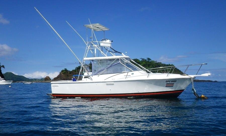Tuna Fish boat - Papagayo Fishing