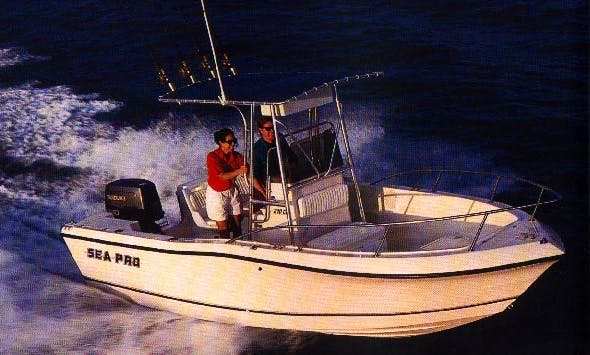 22' Sea Ray Pro Boat & Guided Fishing In Goose Creek
