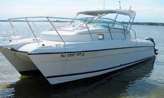 "Charter Luxury Catamaran ""dorena"" In Spain"