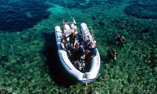 24' Joker Offshore Inflatable Dive Boat In Andratx